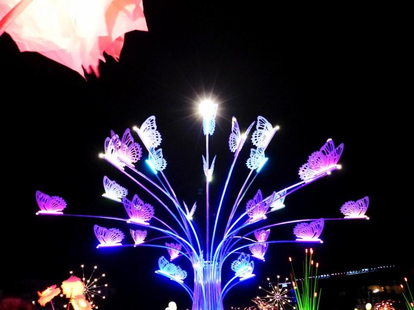 Fête des Lumières à Lyon, place Bellecour