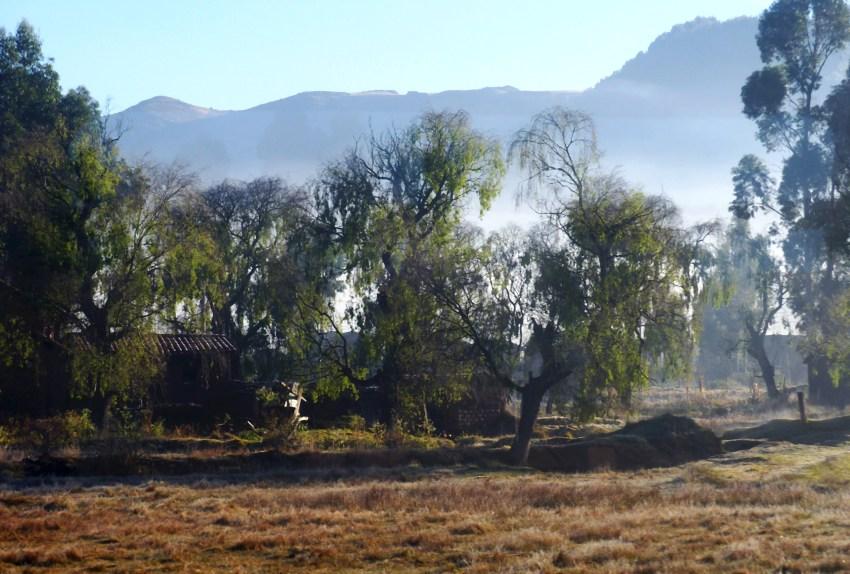 Paysage dans la brume Pérou