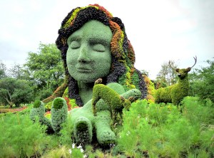 Visage végétal montreal