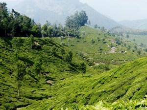 Munnar Inde