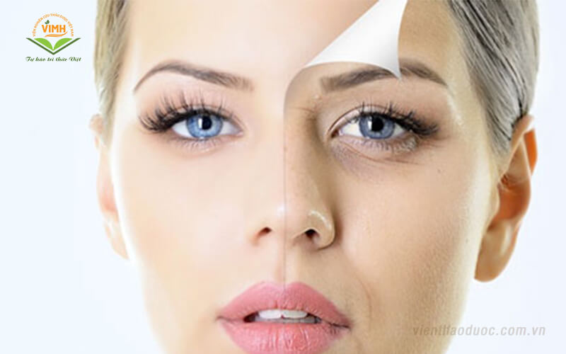 tác dụng của đông trùng hạ thảo với làm đẹp