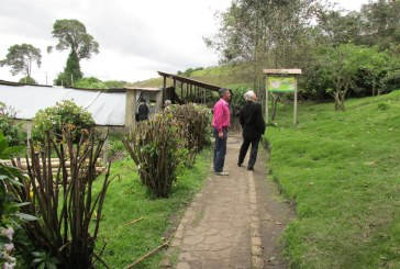 Un día de campo en Bogotá