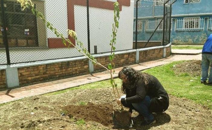 Distrito, administración local y comunidad avanzan en mejoramiento ambiental de San Cristóbal
