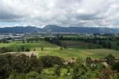 Bogotá tendrá el bosque más grande de Latinoamérica