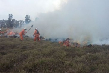 Incendio en localidad de Fontibón arrasó con 2500 metros de pasto