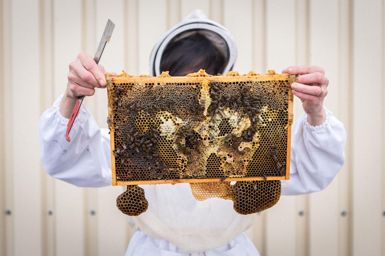 viertel-vor-stadtbienen-erika-mayr-photo-marcus-werner-14