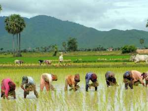 Cambodia Adventure Tours: Cambodia Tour For Landscapes