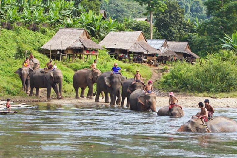 Laos Family Tours: Laos Family Vacation With Elephant Riding