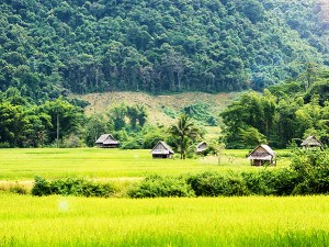 Essence of Laos adventure tours - Laos adventure tours