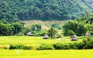 Essence of Laos adventure tours - Laos adventure tours
