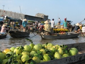 Cambodia Cruise Tours: Downstream Cambodia Cruise Expedition To Vietnam