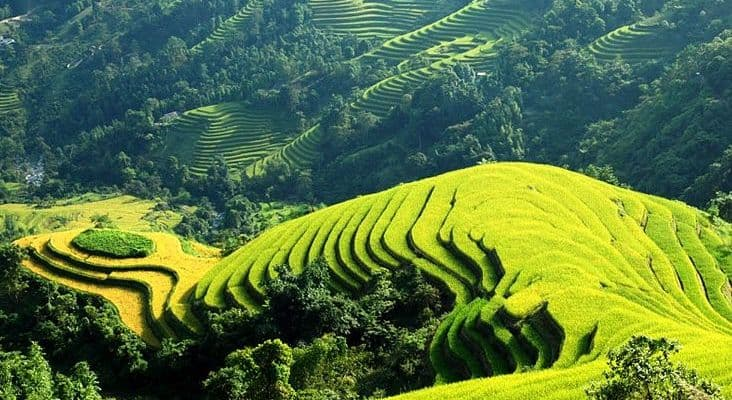 8-DAY HANOI - SAPA - HALONG BAY PACKAGE TOUR