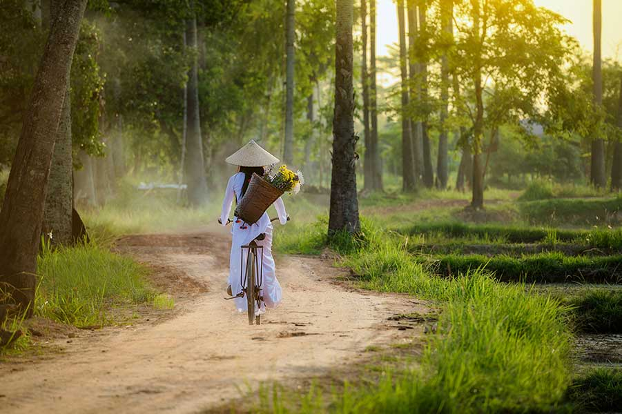 Woman on a bicycle in a vietnamese landscape