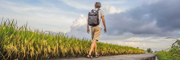 Man with backpack walks in a field