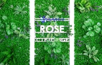ROSE lounge_Tan Son Nhat Internat_onal Airport_タンソンニャット国際空港_ホーチミン_ベトナム