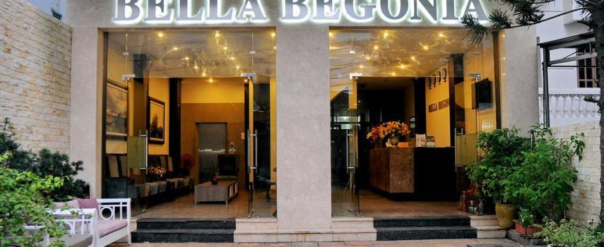 Begonia Nha Trang