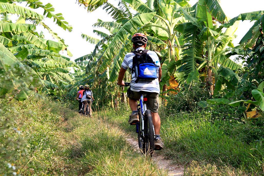 Bac Ninh Cycling