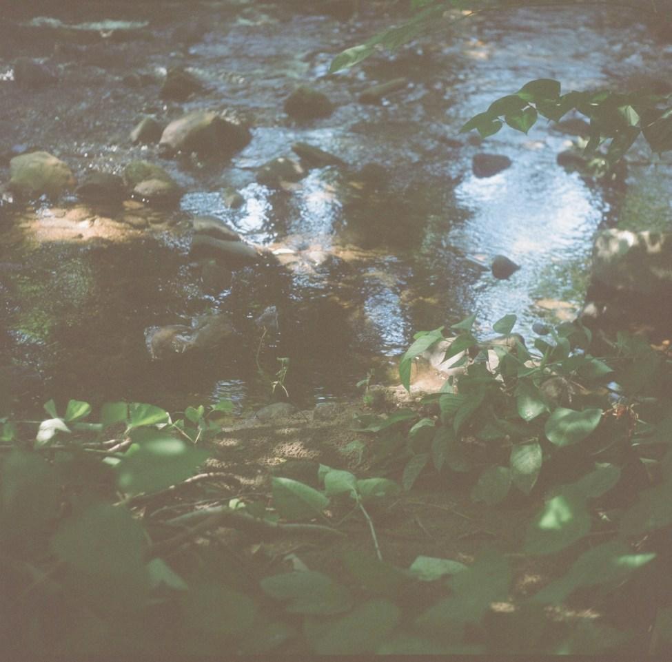 Weirs Project Summer   Nikki Gardner