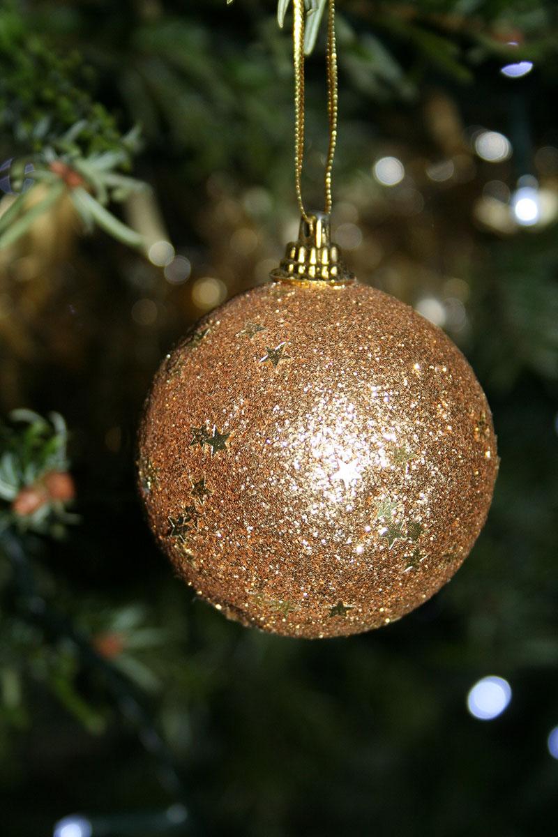 Senior-Christmas-Party-2014-005