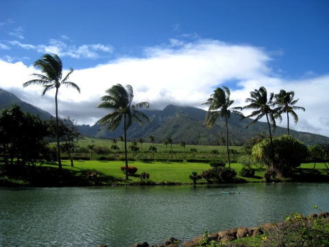 The 5 Best Ways To Get A Great Deal To Hawaii View From