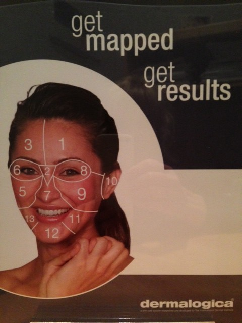 Dermalogica Facemapping - the way to excellent skin care