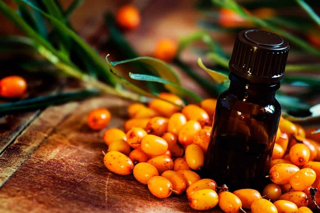 Top 13 Health Benefit of Sea Buckthorn Oil & Side Effects