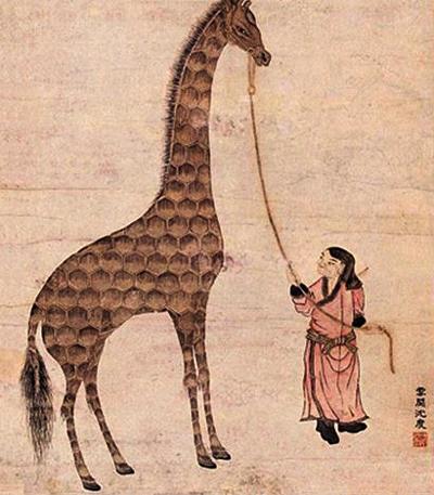 A giraffe from Africa