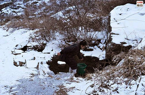 A Daoist nun fetching water from a pond