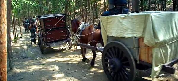 Medicine Valley's horse caravan