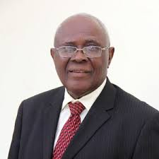 Without reforms, land assets are dead capital – Mabogunje