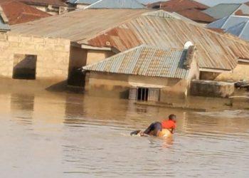 Niger floods destroy 2,714 houses – SEMA