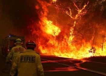 Australia braces for record heat, 'catastrophic' bushfire danger