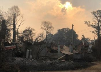 Australia fires: Almost 2,000 homes destroyed in marathon crisis