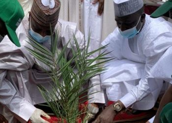Sokoto State Governor inaugurates tree plantation