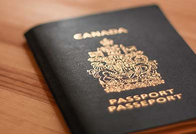 View Point Immigration passport process
