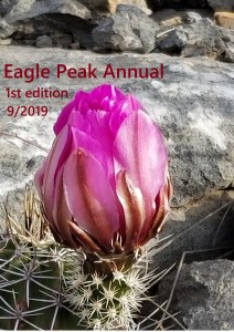 Cover of the 2019 Eagle Peak Annual with a picture of a magenta cactus bloom
