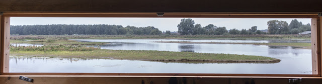 Views From the Hide Window