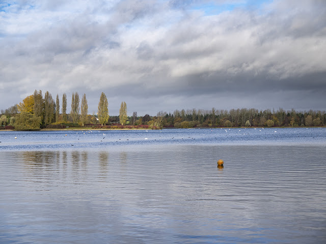 More Views over Willen Lake
