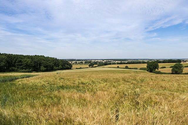 Views over Buckinghamshire