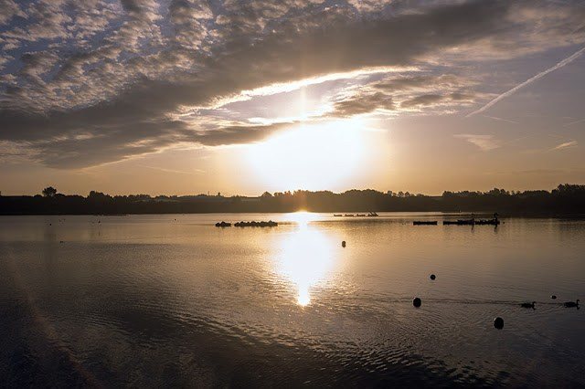 Morning sun across Willen Lake