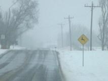 snowy day 119