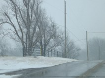 snowy day 121