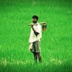 भारतीय किसान परेशान हैं 54645