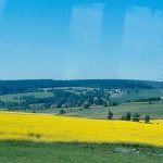 Yellow fields of canola in the spring in Czech Republic in northern Europe. (Photo by roger4336, Creative Commons License)