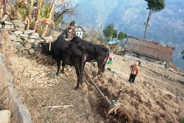 Poverty is a pervasive problem in rural Nepal. (Photo by Kyle Knight/IRIN)