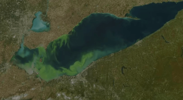 An aerial view of Lake Aerie shows the extent of algae problem. (Photo via Quest Science video)