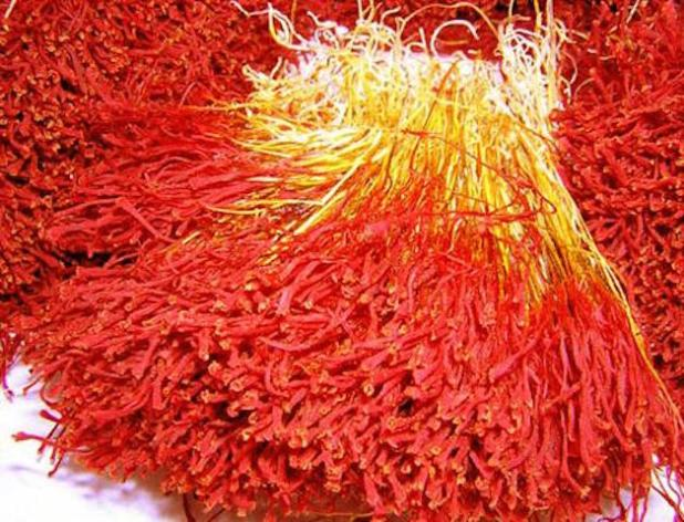 Dried saffron safflower.