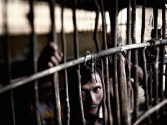 India Changes Tack on Rohingya