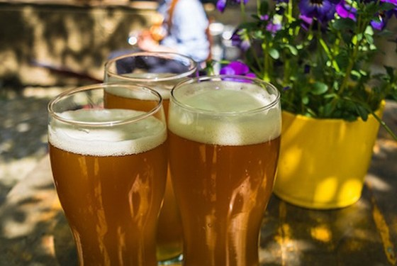 best beers for the summer