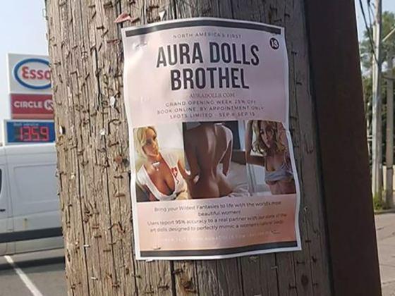 Sex Doll Brothel Toronto - Aura Dolls | View the VIBE Toronto